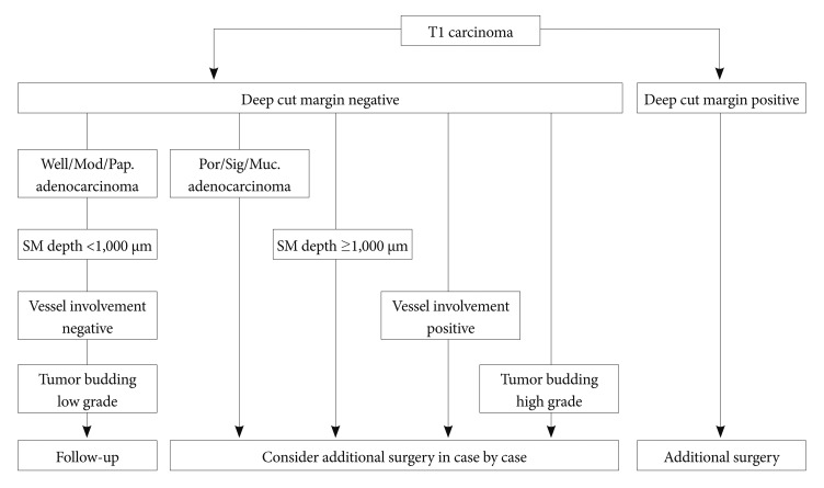 Endoscopic Assessment Of Colorectal Cancer With Superficial Or Deep Submucosal Invasion Using Magnifying Colonoscopy
